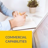 Our portfolio - Commercial Capabilities