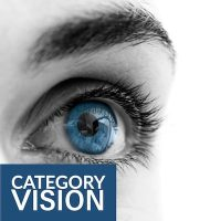 Delivering Category Vision