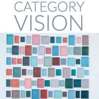 Category Vision
